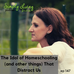 The Idol of Homeschooling (and Other Things That Distract Us) • ep 147