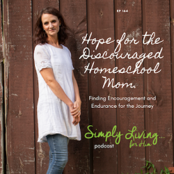 Help for the Harried and Discouraged Homeschool Mom: Finding Endurance and Encouragement//ep164