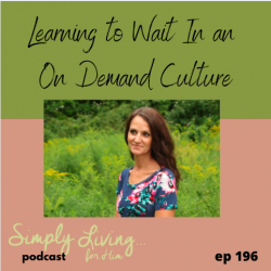 Learning to Wait in an On-Demand Culture// ep 196